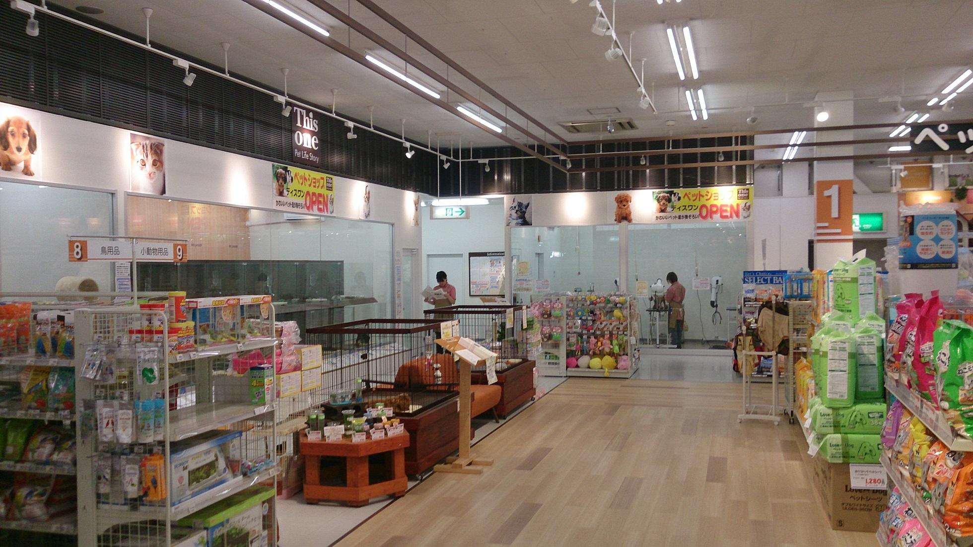 ペットショップふしみ ディスワン岩沼店