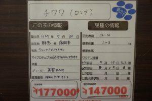 DSC00665[1]