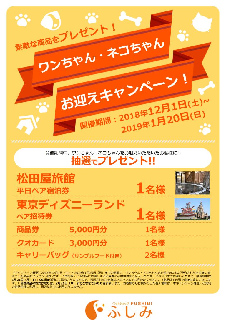 第4弾ペットショップふしみ一関店お迎えキャンペーン12月1日~1月20日