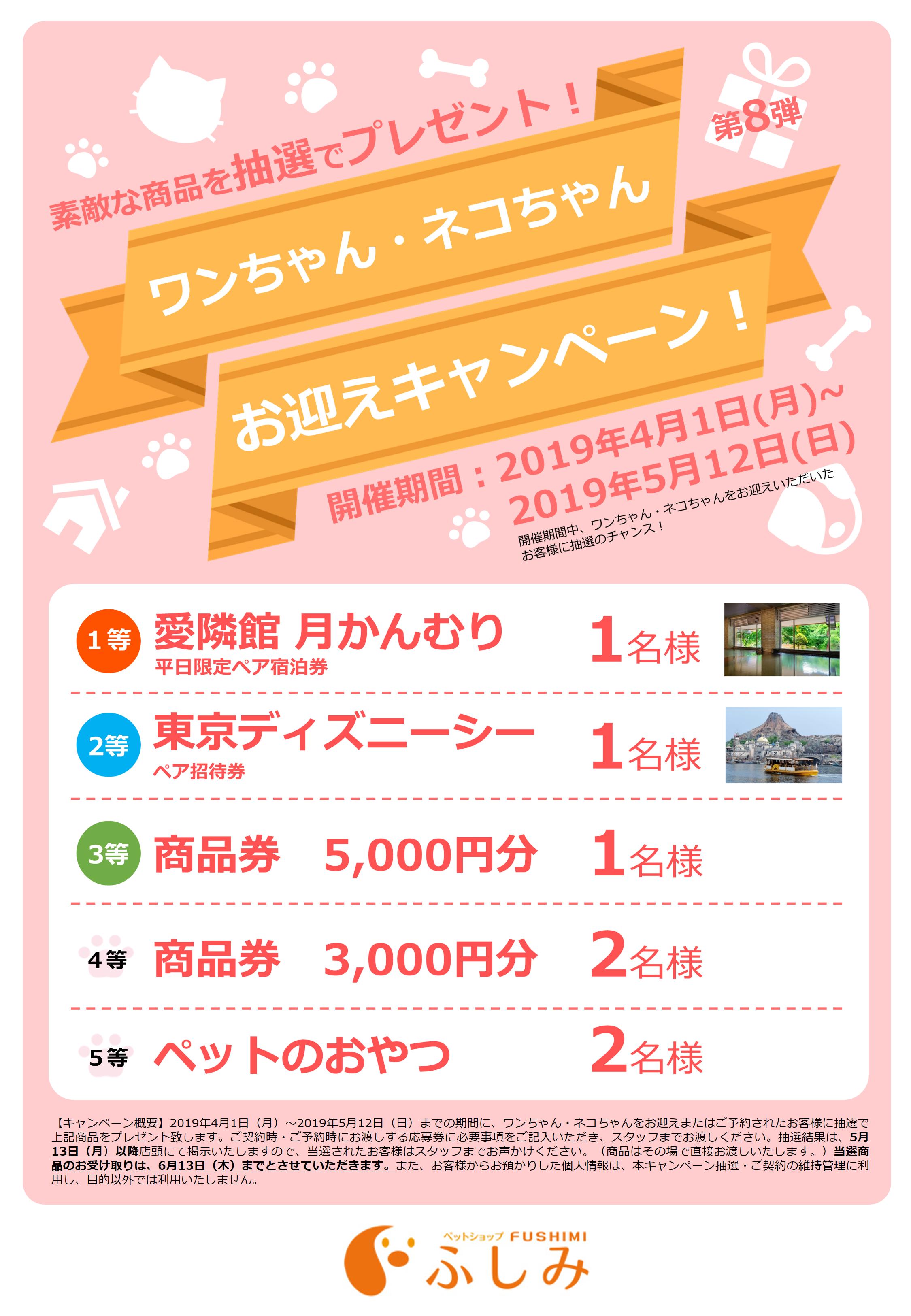2019年・第8弾・お迎えキャンペーン開催・一関店・ふしみ~・~4/1~5/12迄開催・第28日回・TVCM放映・取材風景