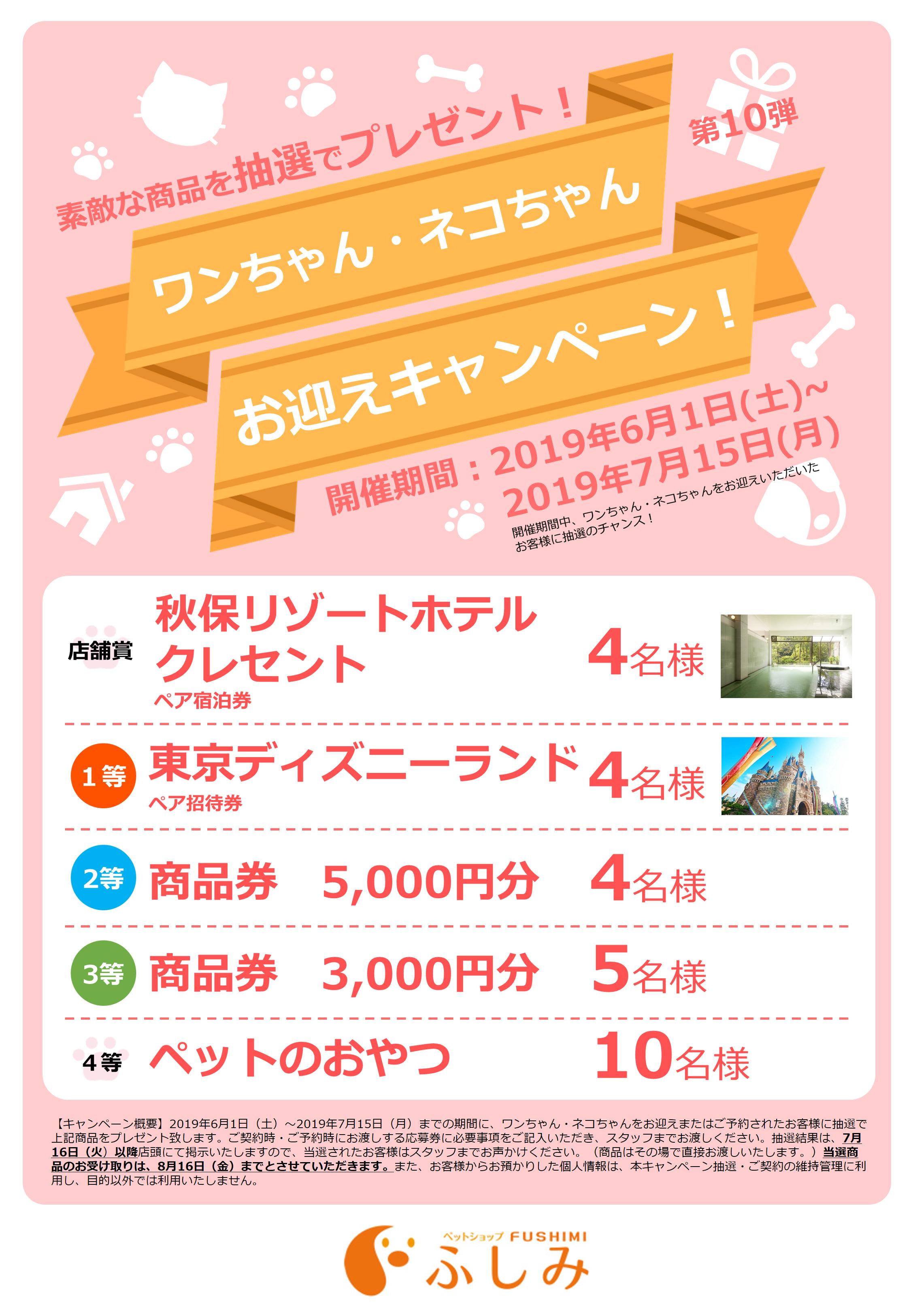 2019年・第10弾・お迎えキャンペーン開催・宮城5店舗・ふしみ~・~6/1~7/15まで・第30回・TVCM放映・取材風景