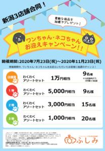 """第24弾!""""お迎えキャンペーン開催のお知らせ"""""""