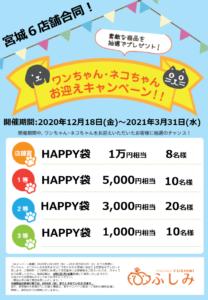 家族になろうよ!仙台富沢新規オープン・28弾・お迎えキャンペーン開催!